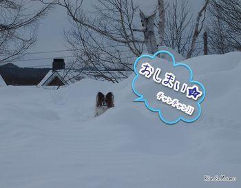スキー10.jpg