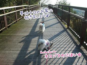 名古屋4.jpg
