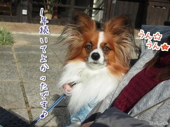奈良②.jpg