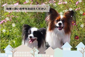 奈良⑫.jpg