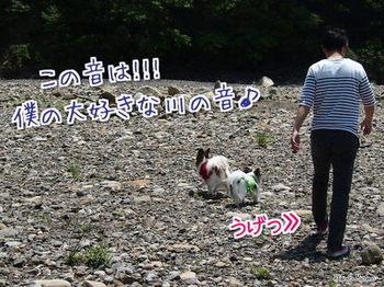 川①.jpg