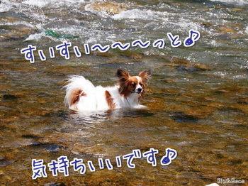 川⑥.jpg