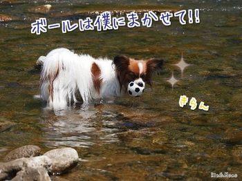 川⑩.jpg