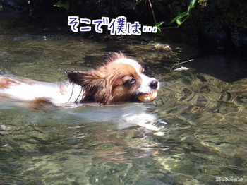 川4.jpg