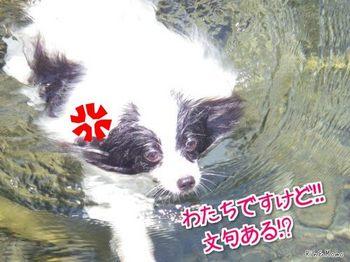 川9.jpg