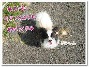 武庫川11.jpg