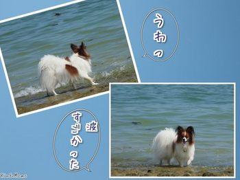 沖縄⑫.jpg