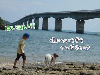 沖縄⑯.jpg