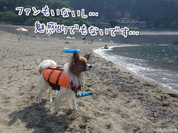 海④.jpg