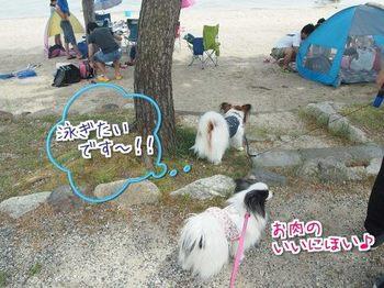 琵琶湖4.jpg
