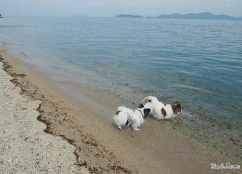琵琶湖7.jpg