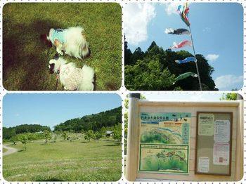 篠山④.jpg