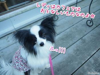 篠山⑩.jpg