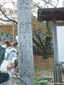 篠山1.jpg