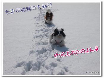 蒜山8.jpg