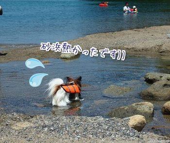 青井浜2.jpg