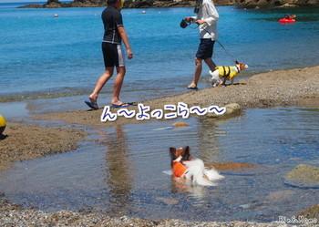 青井浜3.jpg