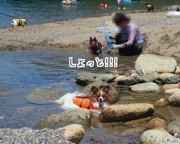 青井浜4.jpg