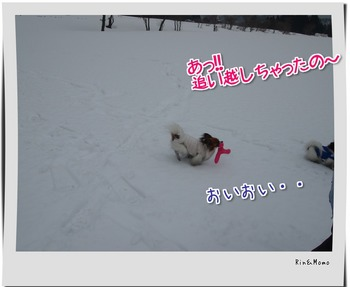 yukio9.jpg