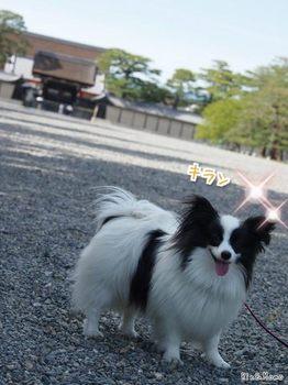 京都①.jpg