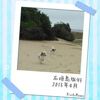 小浜⑪.jpg