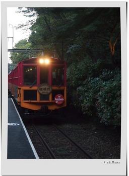 嵐山9.jpg