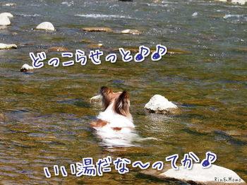 川④.jpg