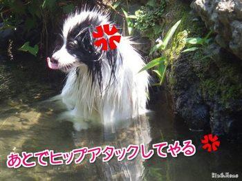 川10.jpg