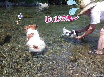 川12.jpg