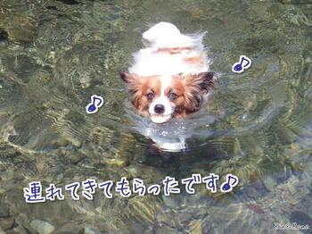 川3.jpg