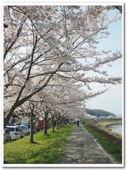 武庫川①.jpg