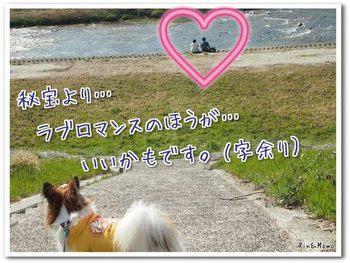 武庫川10.jpg