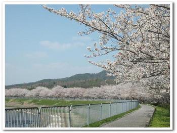 武庫川2.jpg