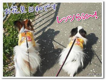 武庫川5.jpg