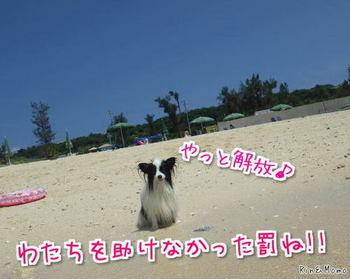 沖縄⑧.jpg