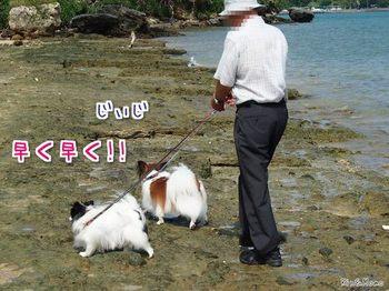 沖縄⑬.jpg