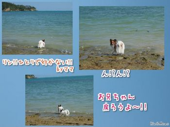 沖縄⑭.jpg