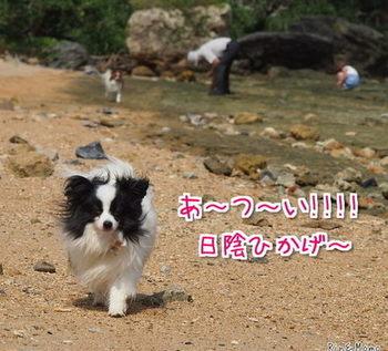 沖縄⑰.jpg