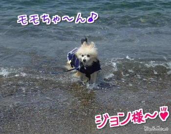 海①.jpg