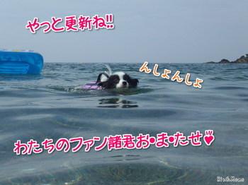 海②.jpg