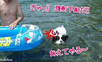 海⑧.jpg