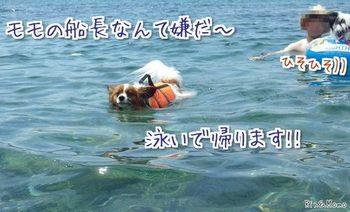 海⑩.jpg