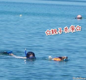海6.jpg