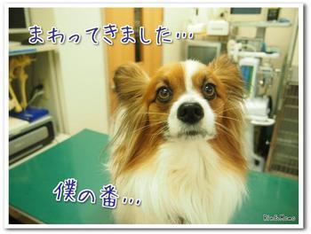 病院8.jpg