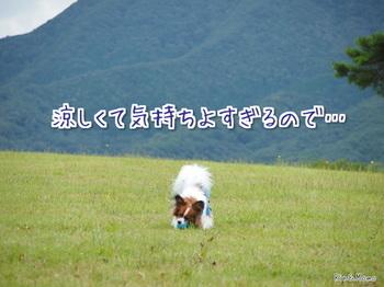 蒜山5.jpg