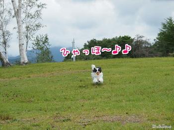 蒜山6.jpg