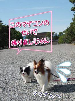 貴船⑮.jpg
