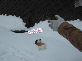 雪山9.jpg