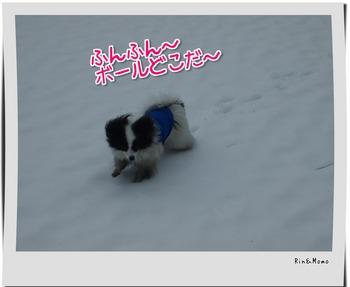 yukio5.jpg