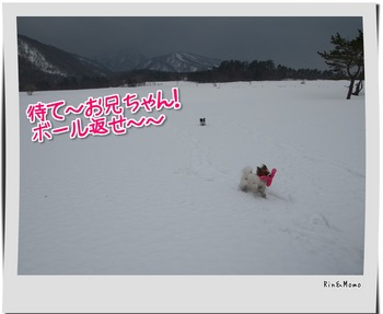 yukio8.jpg